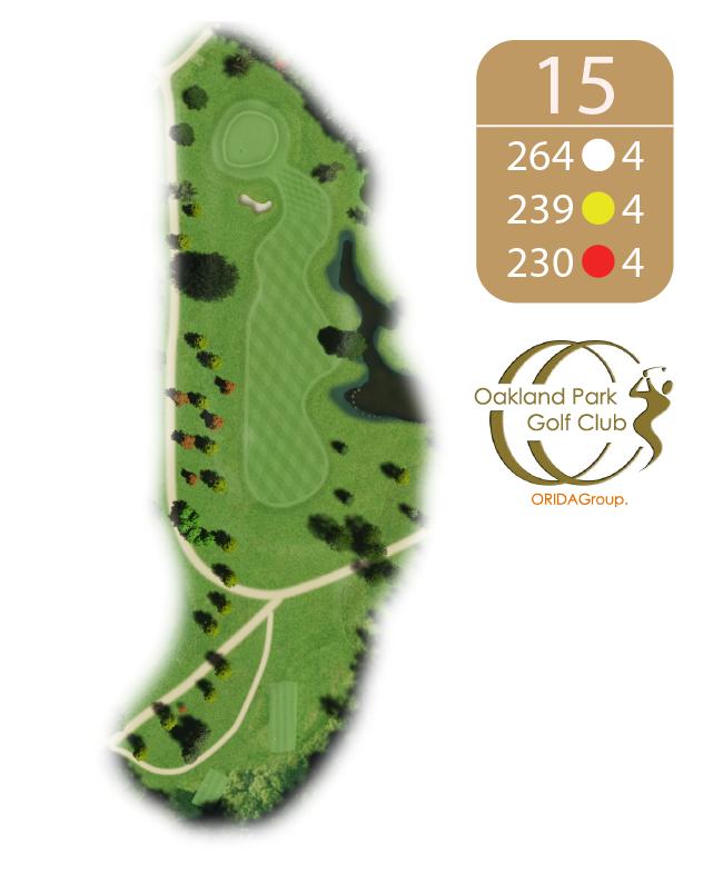 Oakland Golf Club Hole 15