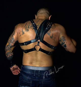 Chris Dominant Harness Flogger by Pebbles Lacasse