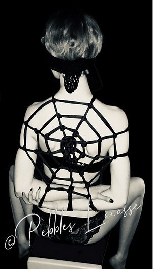 Gem in a Spiderweb by Pebbles Lacasse
