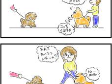 飼い主の選択が愛犬の選択を変える
