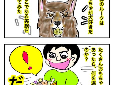 【4コマ漫画】選択の自由 編