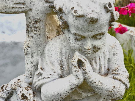 Meditations in the boneyard