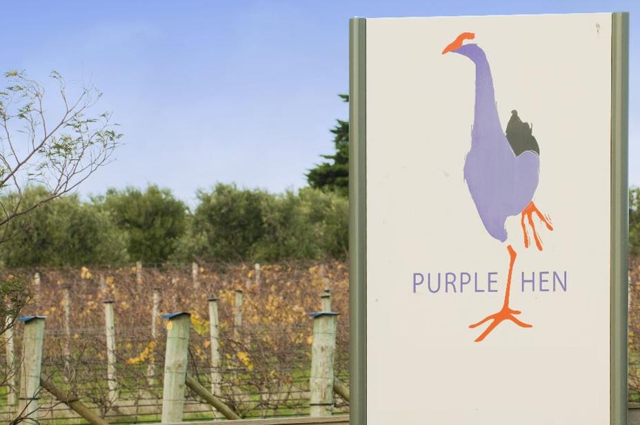 Purple Hen