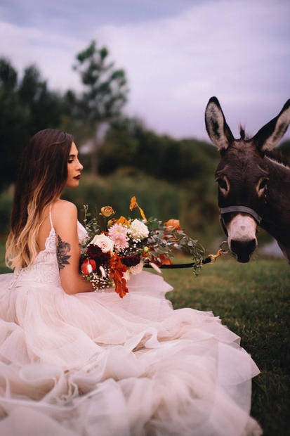 bridal beer burro