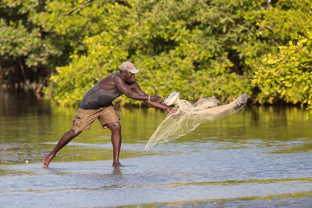 _H2P8880 Fisherman tossing net.jpg