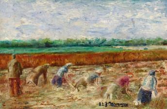 The Potato Harvest