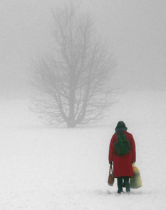 Winter Walk to Work.jpg
