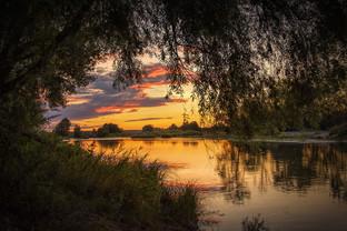 Loire by John Wickett