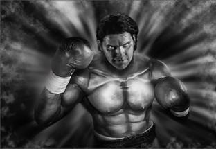 The Boxer by Ian Bateman