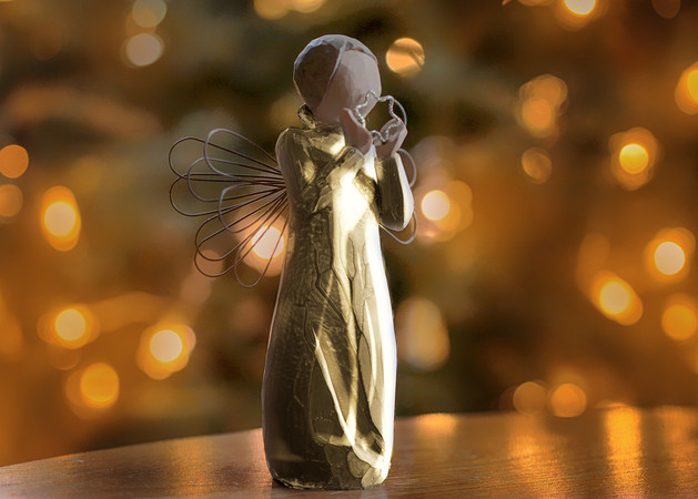 Christmas Wish by Elaine Bateman