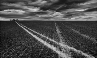 Tracks by John Perriam 10 points