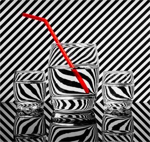 Zebra Tumblers by Paul Gale