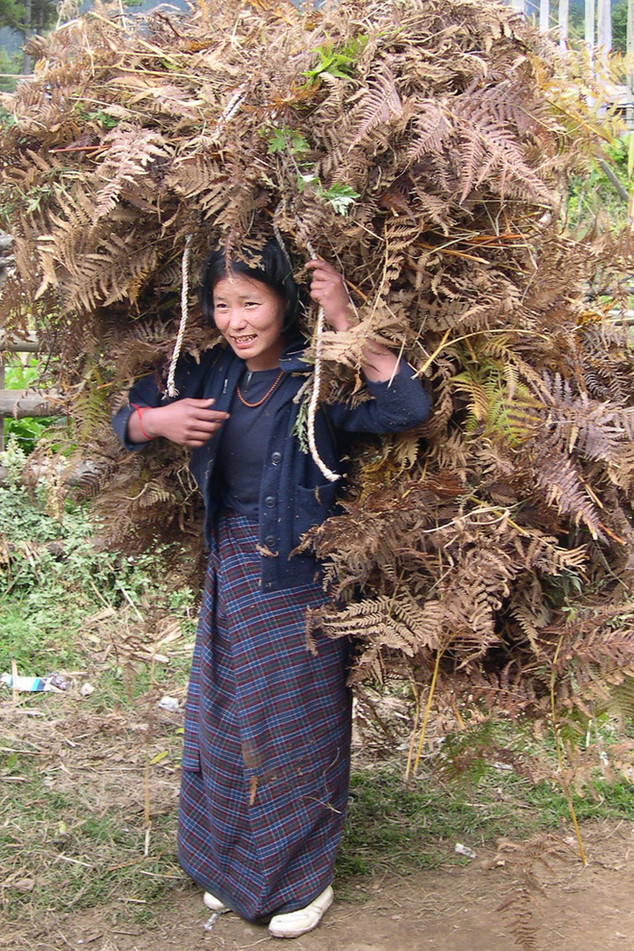 Carrying a heavy load, Bhutan