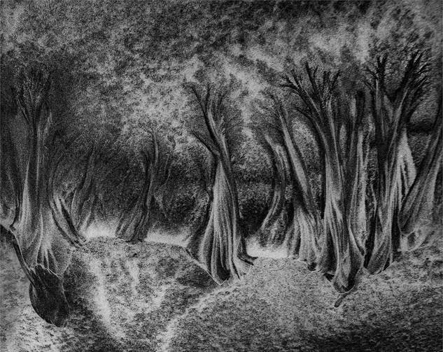 Sand Forest by Lynn Middleton Flynn