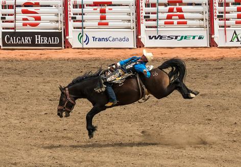 Calgary Rodeo.jpg