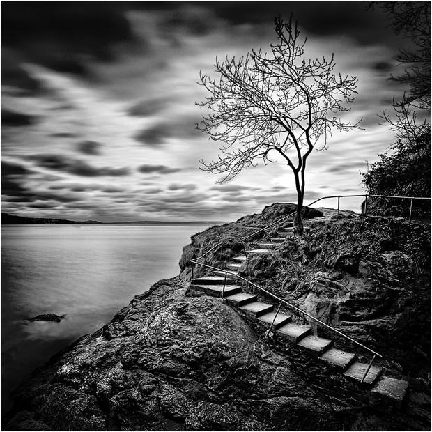 Alice's Ghost by John Wickett