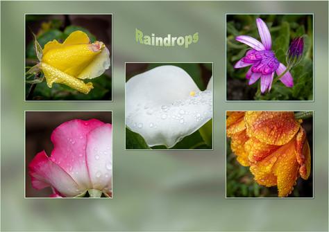 Raindrops by Christine Chittock