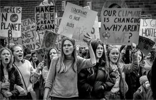 Protesting by Sheila Haycox