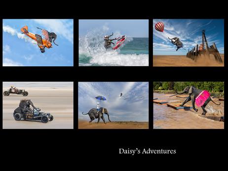 H/C Colour Print - Daisy's Adventures by Sheila Haycox
