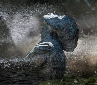 Spirit of water by Elaine Bateman