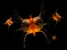 Space Invaders by John Perriam