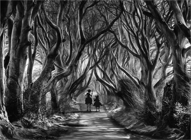 Dark Hedges by Ian Bateman