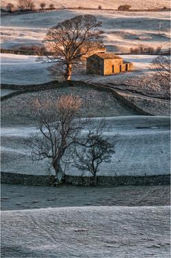 13 Frosty Morning