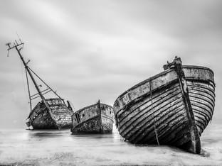 3rd - Fleet Remains - Derrick Holliday ARPS