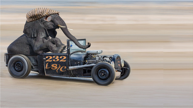 H/C Hot Rod Racer by Sheila Haycox