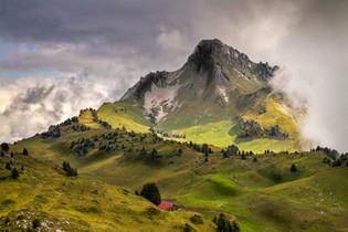 Alpine Farm by Peter Hyett