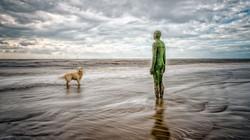 PrintOne Man and his Dog