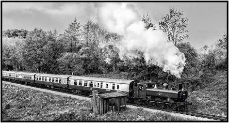 SouthDevon Railway01.jpg