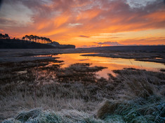Frosty morning by Brian Westaway
