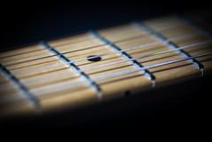 B42 1 Neck Strings & Frets.jpg