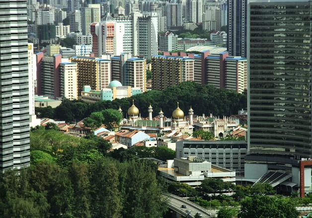 Singapore by Elaine Bateman