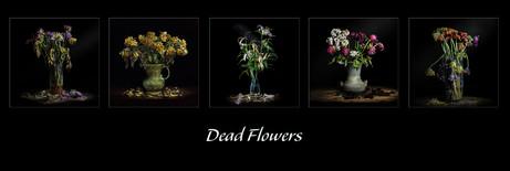 1st Colour Print - Dead Flowers by John Wickett