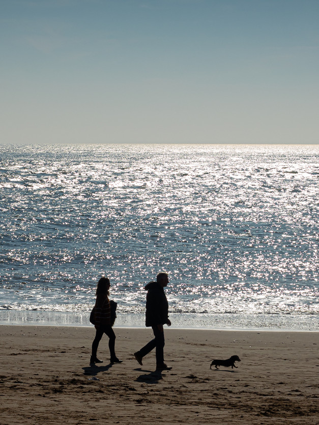 Sea Silhouettes & sausage dog by Judy Grout
