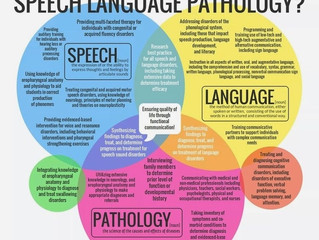 What is a Speech Language Pathologist Anyway?!
