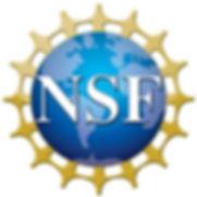 nsf logo.jpg