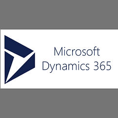 ms dynamics.jpeg