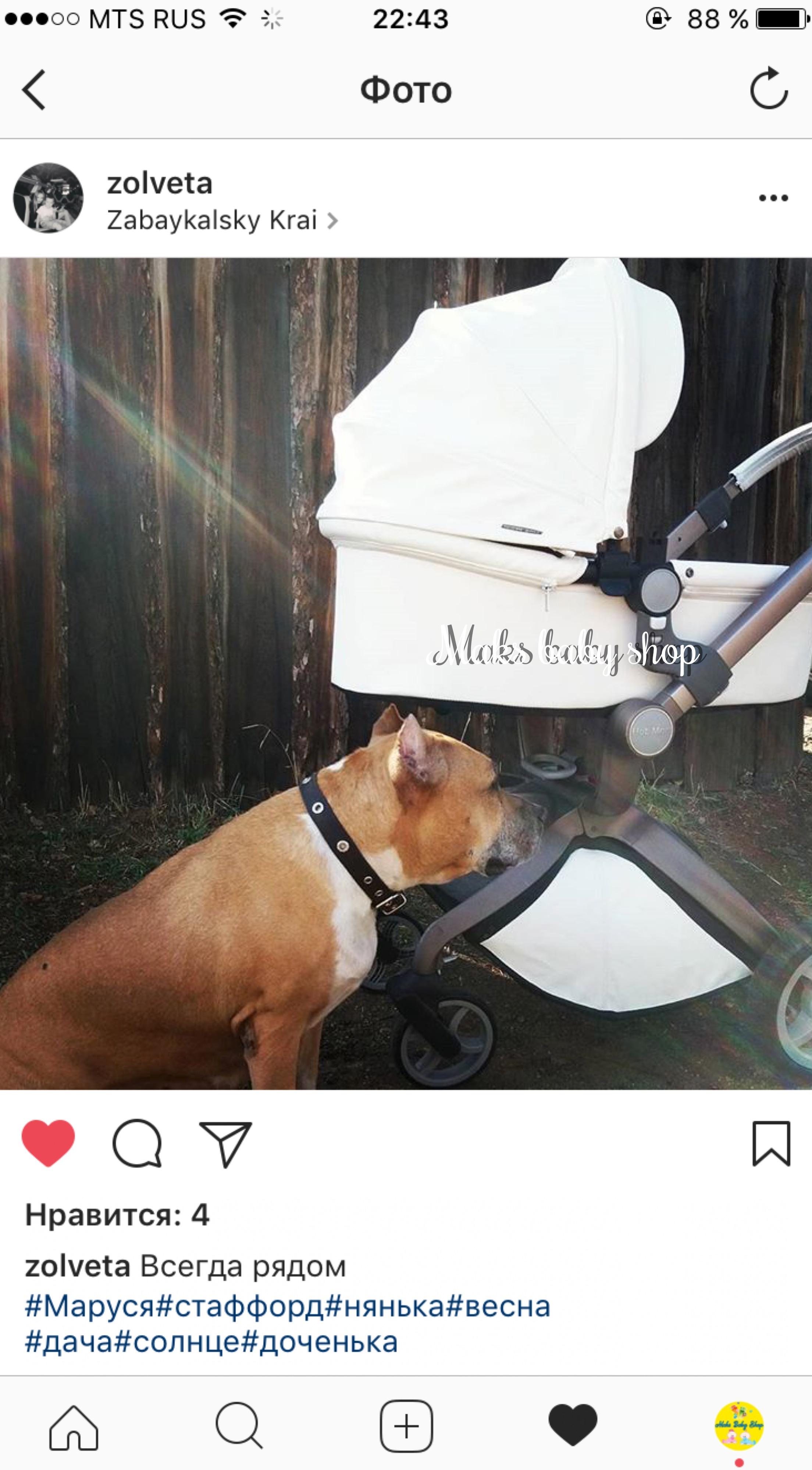 коляска hot mom хабаровск