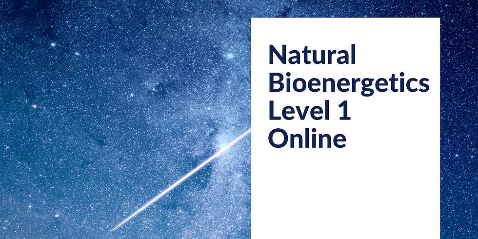 Natural Bioenergetics Level 1 Online (1)