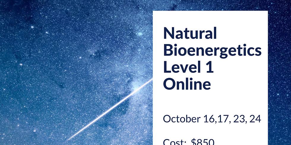 Natural Bioenergetics Level 1 Online
