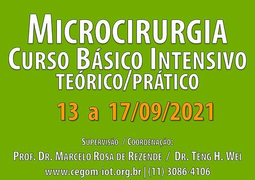 13 a 17 de Setembro - Curso Básico Intensivo de Microcirurgia