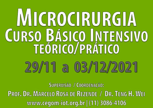 29 de Novembro a 03 de Dezembro - Curso Básico Intensivo de Microcirurgia