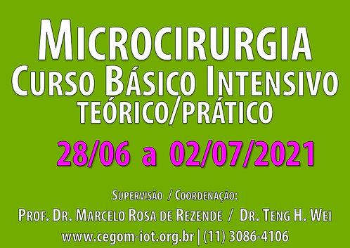 28 de junho a 02 de julho - Curso Básico Intensivo de Microcirurgia