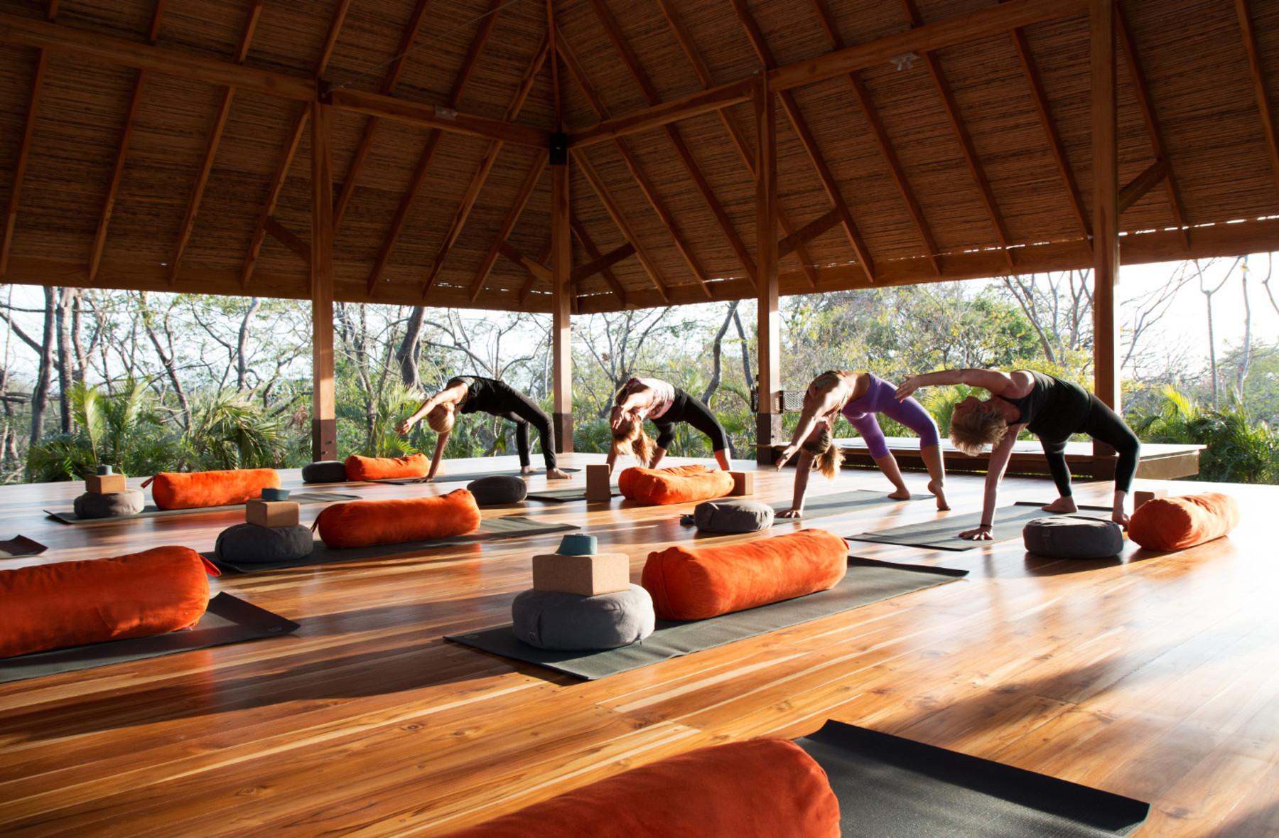 Bodhi Tree yoga studio