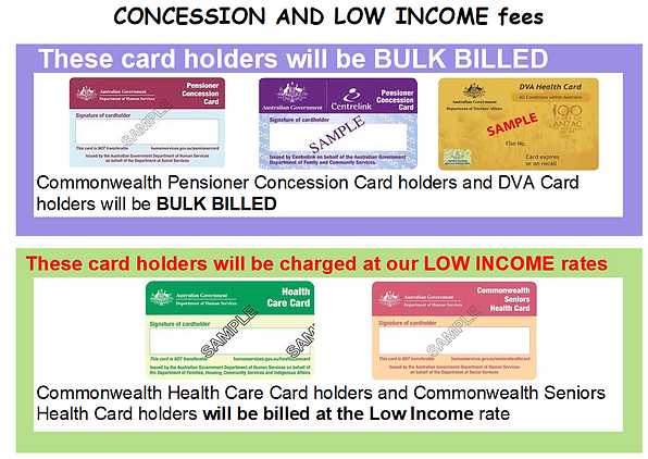 Bulk Bill and Low Income Fees pictorial.