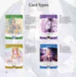 New SC Handbook12.jpg