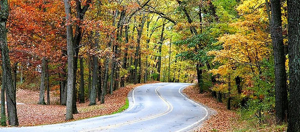 Fall Colors and a Winding Country Road a